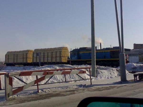 Производим продаем вагонными нормами пиломатериал в Казахстан 3